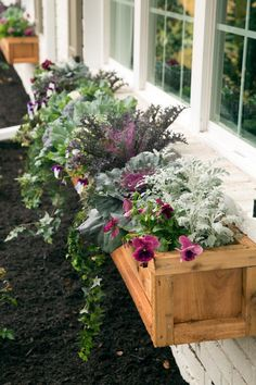Fixer Upper hosts Chip and Joanna Gaines installed natural wood window boxes adding color to the front of the Gulley home. Wood Window Boxes, Window Box Plants, Fall Window Boxes, Kitchen Window Sill, Window Box Flowers, Window Planter Boxes, Wood Windows, Fall Flower Boxes, Front Windows