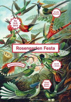 Rosengarten Festa poster / designed by Thomas Kronbichler in collaboration with Max Edelberg and Julian Koschwitz