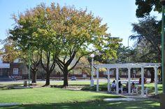 Plaza Árabe