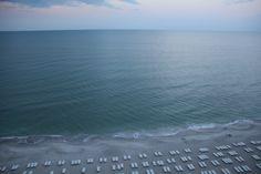 la playa, naples fl