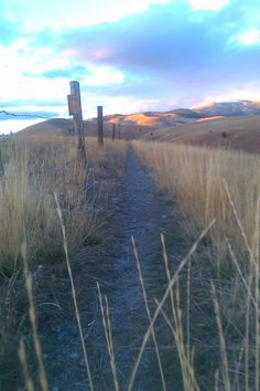 Waterworks Hill trail, Missoula Montana