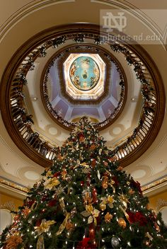 Dec. 7, 2012; President's Christmas Reception, Main Building..Photo by Matt Cashore/University of Notre Dame  Copyright University of Notre Dame