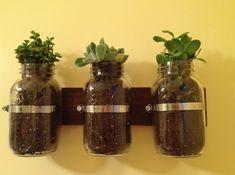 reciclar frascos
