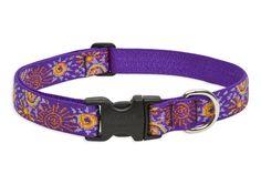 Sunny Days Large Dog Collar