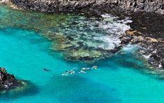Baia dos Porcos Em Fernando de Noronha, essa é considerada uma das mais lindas piscinas naturais do Brasil. São aproximadamente 25 minutos de caminhada. É rica em fauna marinha, entretanto os mergulhos no local são proibidos por questões ambientais.