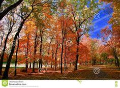 Resultado de imagen para imagenes del otoño en canada