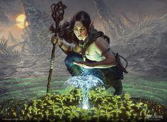 Lifespring Druid - Battle for Zendikar MtG Art