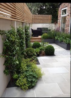 Small garden with modern style