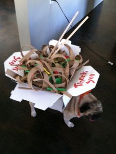Chinese Takeout Dog Costume