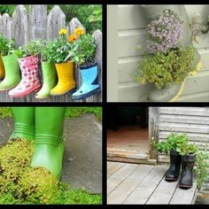 Reuse broken or outgrown boots: Rubber Boot Planters