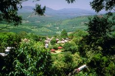 Magoebaskloof near Tzaneen - Limpopo Province - South Africa African Countries, Countries Of The World, Great Places, Beautiful Places, Beautiful Pictures, Out Of Africa, Pretoria, Local Events, Rest Of The World