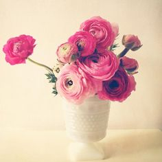 Cottage Flowers . pink rose magenta flowers . by joystclaire, $28.00