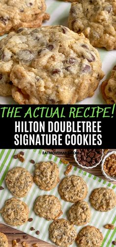 Who can say no to sinfully good impossibly delicious Hilton DoubleTree cookies Baked with loads of chocolate chips and walnuts this official recipe for Doubletree chocolate chip cookies is the best chocolate chip cookie recipe Doubletree Chocolate Chip Cookie Recipe, Chocolate Chip Walnut Cookies, Doubletree Cookies, Chocolate Cookie Recipes, Chocolate Chip Oatmeal, Recipes With Chocolate Chips, Chocolate Chip Biscuits, Oatmeal Cookie Recipes, Pudding Desserts