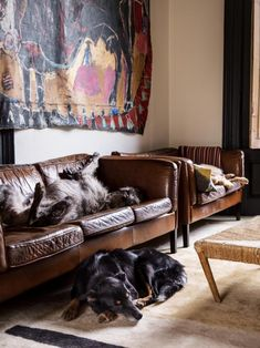 Gaby Dellal, London home renovation, Damian Elwes painting, Remodelista - Dogs belong on sofas