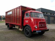 Daf v. Vintage Trucks, Classic Trucks, Big Trucks, Cars And Motorcycles, Transportation, Vans, Vehicles, Busse, Livestock