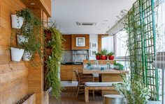 As plantas podem decorar a área da churrasqueira a gás para apartamento Gazebos, Backyard, Patio, Big Houses, Tiny Living, Working Area, Heaven On Earth, Outdoor Spaces, Terrace