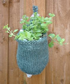 Knitted Container Garden