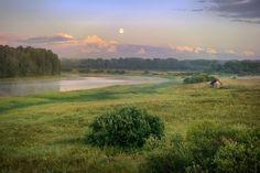 На границе Ленинградской и Новгородской областей, долина реки Тигода.