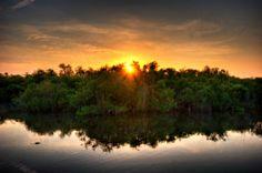 Florida Everglades National Park