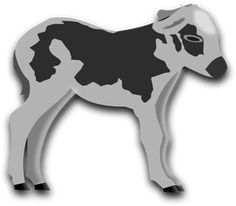 Vector clip art of small cow. Color image of baby cattle. Cow Clipart, Old Boy Names, Hanuman Images, 13 Year Old Boys, Run To You, 13 Year Olds, Faith In God, Vector Graphics, Colour Images