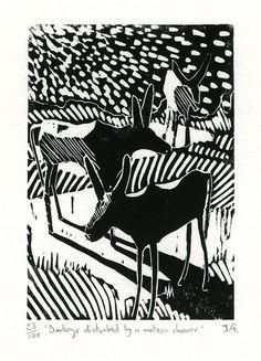 Ein Linolschnitt Drucken mit dem Titel Esel gestört durch A Meteor Shower.    Die erste von vielen Esel-themed Linolschnitte, die was ich