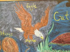 Waldorf ~ 4th grade ~ Human & Animal ~ Eagle ~ chalkboard drawing ~ http://www.waldorf-ideen-pool.de/index.php?aid=2600