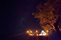 Kanana Camp in the Okavango Delta is the perfect place to experience nature in its purest form. Book a luxury Botswana safari camp today. Luxury Tree Houses, Sky Watch, Okavango Delta, Light Pollution, Stargazing, Night Skies, Perfect Place, Safari, Wildlife