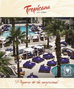 #Tropicana Contact me to book this #Las Vegas hotel islanddazetravel@gmail.com