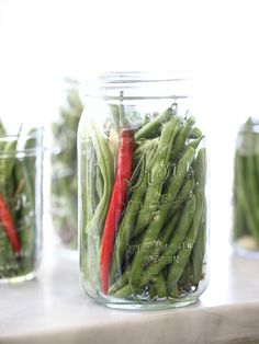 Farmstand Spicy Dilly Beans and a giveaway - Shrinking ...
