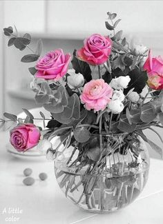 ~Katarina~pink roses Simply Beautiful, Beautiful Flowers, Color Splash, Pink Roses, Flower Power, Party Favors, Glass Vase, Centerpieces, Happy Birthday