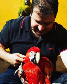 Clínica de silvestre e exóticos. Harmonia e sintonia do dr Clayton com os animais. #exoticvet #passaros #parrot #birds #petsgoiania #clínica #exóticos #silvestres #americanveterinarian #amor #natureza #sintonia by exoticvet_goiania http://www.australiaunwrapped.com/