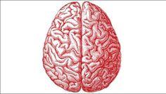 HELP YOUR BRAIN  A Few Ideas To Keep Your Brain Sharp