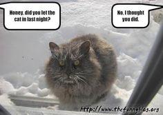 20 Best Winter Humor Images