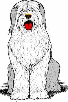 old english sheepdog clip art - Bing Images