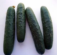 We're rolling in cucumbers! A few vines in the garden are starting to produce lots and yesterday we got a batch more from a friend's. Spanish Food, Cucumber, Spain, Vegetables, Twitter, Garden, Kitchen, Recipes, Garten