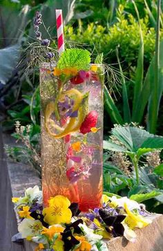 Summer drinks by the Midnight Apothecary using edible flowers from Maddocks Farm Organics.