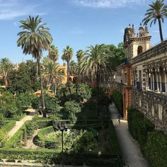 Insta Alcázar #cityscape #archilovers #archidaily #seville #sevilla #realalcazar #alcazar #instagood #blue #skyline #gardens