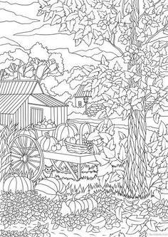 Autumn Harvest Printable Adult Coloring Page from Favoreads | Etsy