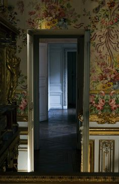 Secret door that Marie Antoinette escaped through in October 1789 when the Paris mob stormed Versailles Chateau Versailles, Palace Of Versailles, Marie Antoinette, Rococo, Escape The Night, Luis Xiv, French Royalty, Francis I, French History
