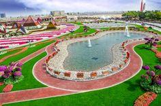 Dubai Miracle Garden | Panorama