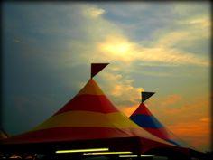 Lions Bluegrass Fair in Masterson Station Park in Lexington KY by Lizette Fitzpatrick, www.lizette.us