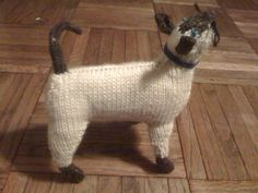 Learn how to knit this cute Siamese cat from Joanna Osborne and Sally Muir's Knit Your Own Cat, just like this reader did