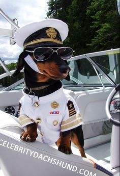 Captain Crusoe - lookin' good.