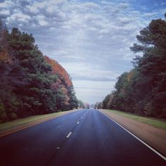Open highways! Fall trees!