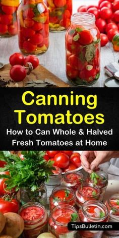 Don& let summer tomatoes go to waste! Learn all about canning tomatoes with these simple tips and enjoy some of the best recipes using canned tomatoes. Canning Tomatoes Water Bath, Canning Stewed Tomatoes, Preserving Tomatoes, Canning Vegetables, Preserving Food, Growing Tomatoes, Best Canned Tomatoes, Freezing Tomatoes, Freezing Vegetables