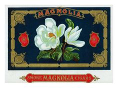 Magnolia Brand Cigar Box Label  Multiple sizes