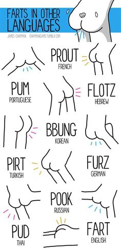 25 Sounds In Different Languages Infographic: The Fart Fart Humor, Funny Cute, Hilarious, Poop Jokes, Different Languages, Puns, Just In Case, I Laughed, Jokes