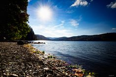 Titisee by Julien-Foto. Please Like http://fb.me/go4photos and Follow @go4fotos Thank You. :-)