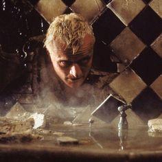 Rutger Hauer as Roy Batty in #BladeRunner (1982)