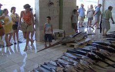 Garrucha, Spain Fish Market